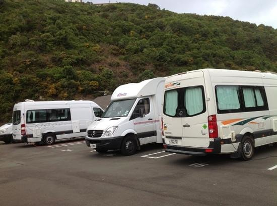 Capital Gateway Motor Inn :                   So called campsite/carpark at Capital Gateway, Wellington