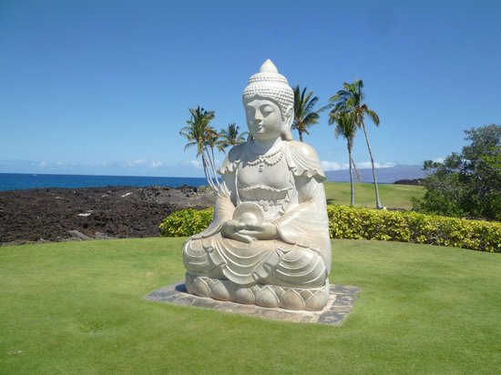 Hilton Waikoloa Village:                   Buddah Point