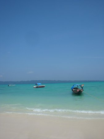 写真Island Vinnies Tropical Beach Cabana枚