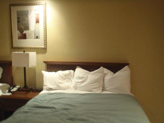Country Inn & Suites by Radisson, Panama City, Panama: habitación