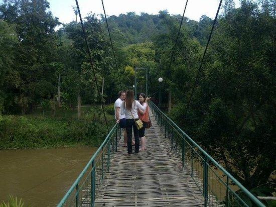 Wat Rong Khun:                                                       Bamboo Bridge