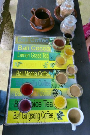 Agus Bali Private Tours:                   Coffee plantation. Yes all yours...for free