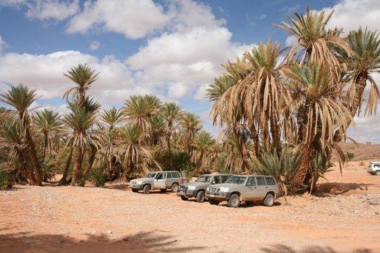 Dune Aventures - Day Trips