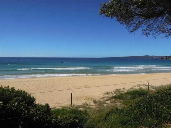 Eden Gateway Holiday Park:                                     Great beach but watch out for the rip