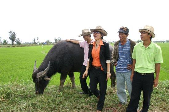 Hoi An Chic Hotel:                                     Tour mit Wasserbüffel