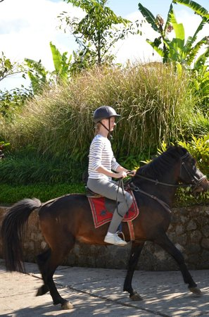 Munduk Moding Plantation: Horse riding