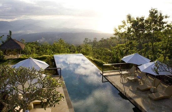 Munduk Moding Plantation : Infinity pool