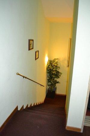 Hotel Continentale: Vano scale