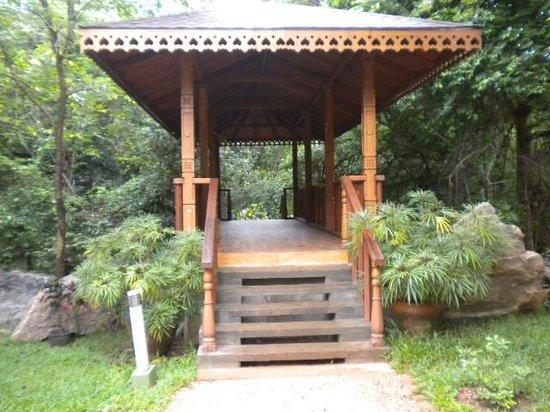 The Paradise Resort and Spa:                   scorcio del giardino