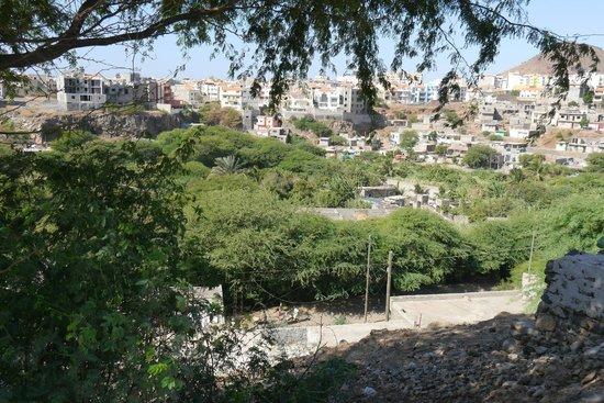 O Jardim Do Vinho:                   View on the city