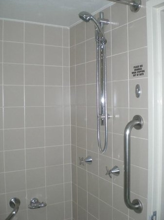 Holiday Inn Sydney Airport: 1007 Power Shower