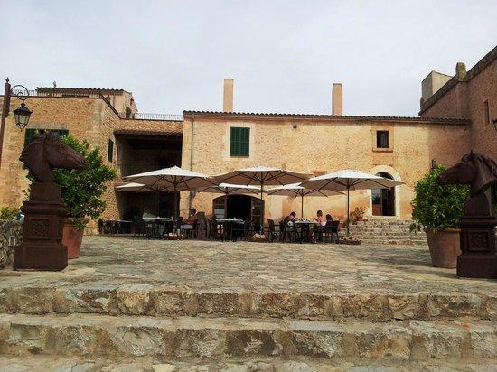 Son Amoixa Vell:                   Frühstück auf der Terrasse