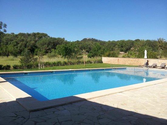 Son Amoixa Vell:                   Pool