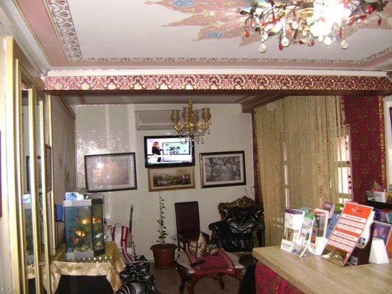 Sultan's Eye Comfort Hotel:                   стойка регистрации