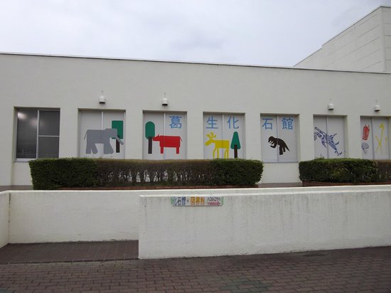 Kuzuu Fossil Museum