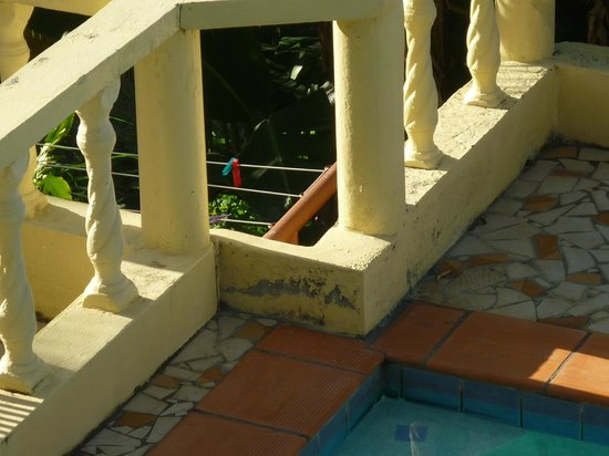 Heaven's Best Guest House & Restaurant: pool fence
