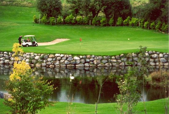 Esker Hills Golf Club: 10th Green