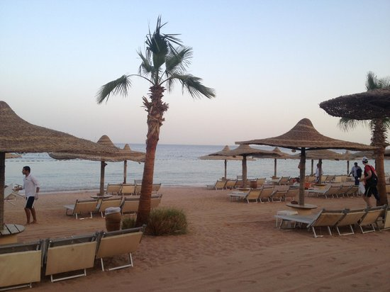 The Royal Savoy Sharm El Sheikh:                   Sunset on Savoy Beach