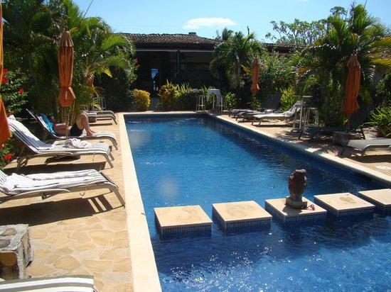Villa Deevena:                   pool