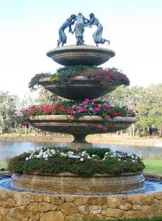 Laurance of Margaret River:                   Beautiful feature in the winery gardens