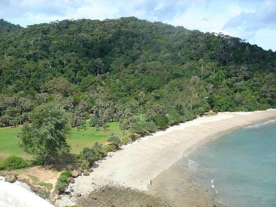 Bamboo Bay Resort :                   National Park, within walking distance of Bamboo Bay