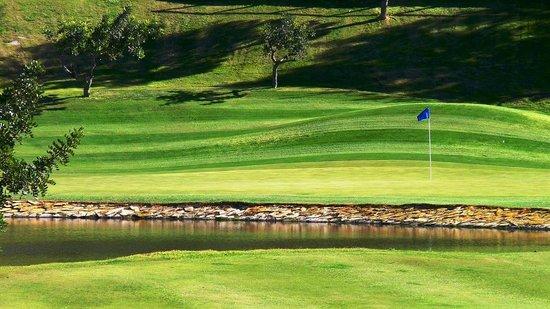 Marbella Club Hotel Golf Resort: Green 3 Marbella Club Golf Resort