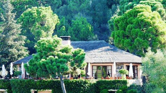 Marbella Club Hotel Golf Resort: Club House Terrace Marbella Club Golf Resort