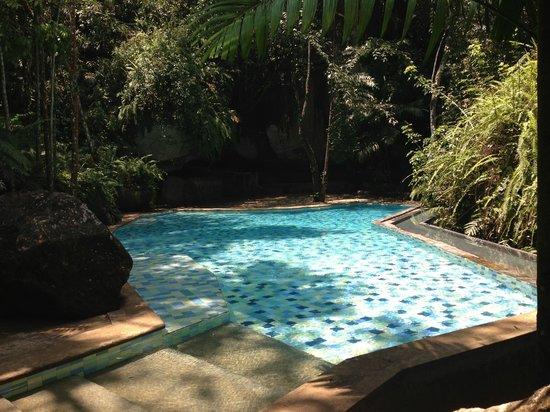 Eads Natural Pool And Backyard Resort : Novit?! Trova e prenota lhotel ideale su TripAdvisor e ottieni i