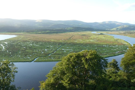 Glandyfi Castle:                   View from room