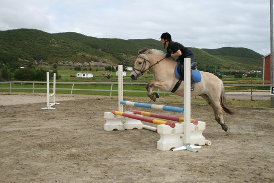 "Sortland, Norge: ""Mass Balder"" at one of the jumpingcamps we had"
