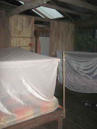Shiripuno Amazon Lodge:                   Our room at shirpuno. Very basic, but all we needed.