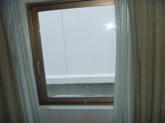 The Celecton Fukushima:                   窓から・・・壁のみ
