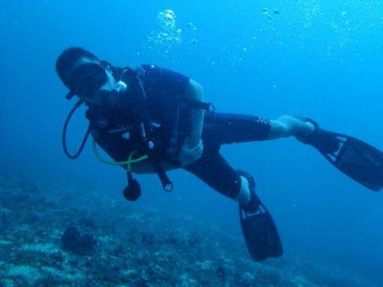 Boracay Island Divers:                   wonderful diving vacation