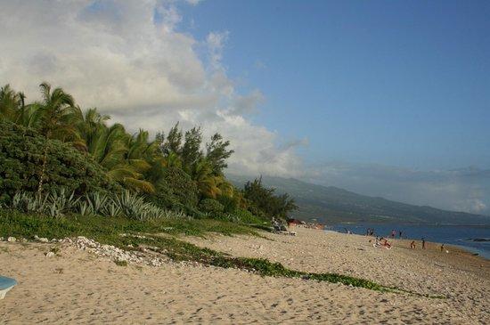 Le Nautile :                   La plage