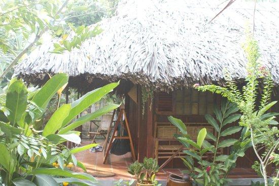 Chaque bungalow est cart par des fruitiers ben for Jardin du mekong homestay