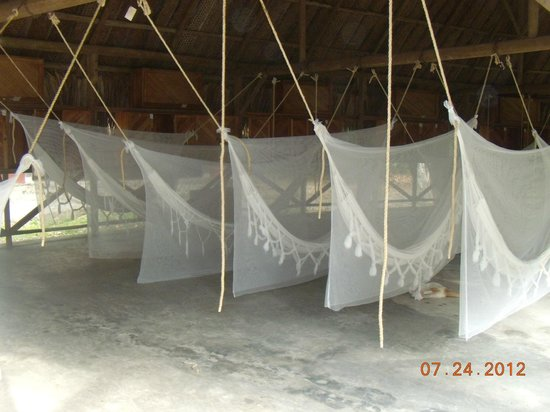 Camping Tayrona:                   zona de hamacas