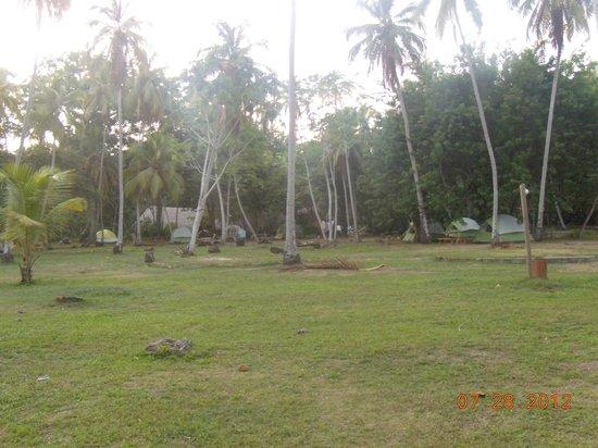 Camping Tayrona:                   camping