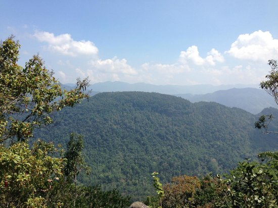 Sinharaja Forest Reserve:                   More views from top of giant Rock