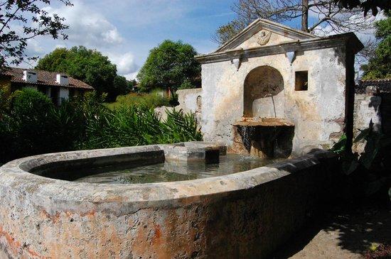 Quinta de las Flores : fontaine