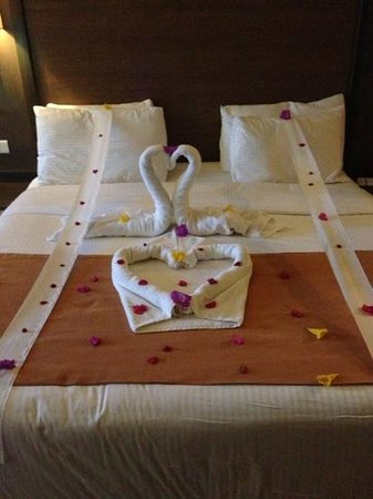 Coral Sea Aqua Club Resort:                   lovely towel art by mustafah