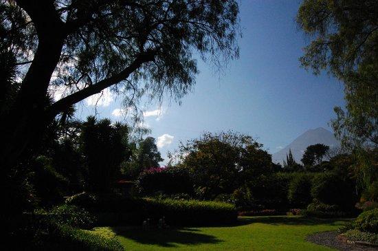 Quinta de las Flores: jardin