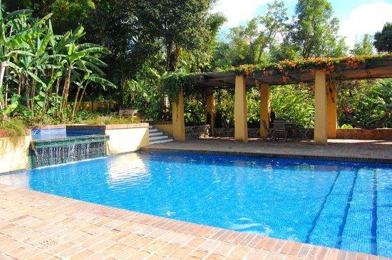 Quinta de las Flores: piscine