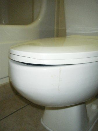 The Patricia Grand, Oceana Resorts:                                     Nasty stain (looked like vomit) on the front of the toilet