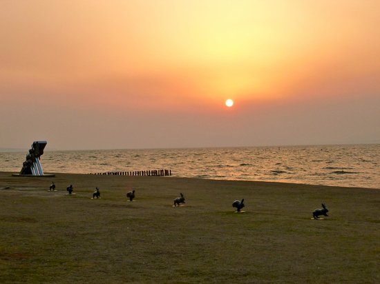 Shimane Art Museum: sunset with museum sculptures along Lake Shinji