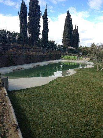 Villa Armena Relais:                   piscina con idromassaggio