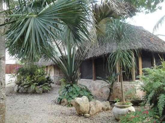 Casa Quetzal:                   Vue de l exterieur