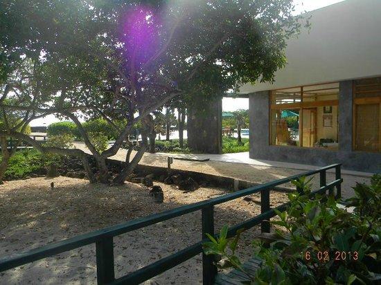Finch Bay Galapagos Hotel:                   Vista desde la habitación