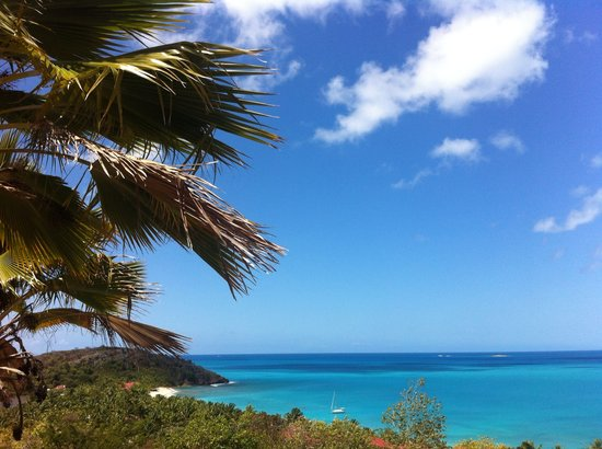 Galley Bay Cottages: Views