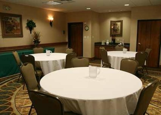 Hampton Inn & Suites College Station / US 6-East Bypass: Meeting Room