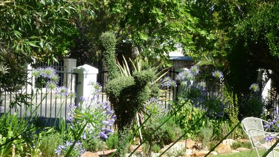 Le Roux's Guest House:                   beauties of the garden